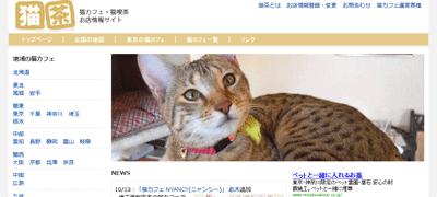 topex 猫茶のトップページの写真を募集